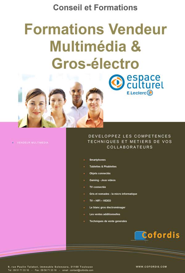 formation-vendeur-multimédia-culturel-gros-electromenager