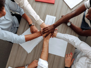 reseau-formation-distribution-conseil